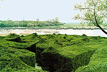 Le jardin des retours bernard lassus atlasmuseum for Le jardin imperial marines de cogolin