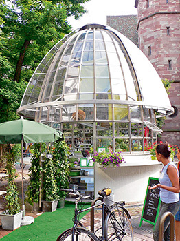 Le Bar des plantes (Jean-Luc Vilmouth)